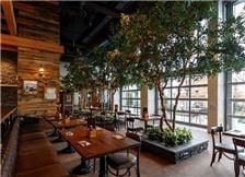Grain Rooftop Lounge